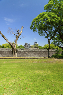 熊本城「復興再建完了の天守閣」二の丸広場より熊本城風景の写真素材 [FYI04858708]