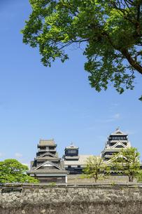 熊本城「復興再建完了の天守閣」二の丸広場より熊本城風景の写真素材 [FYI04858710]