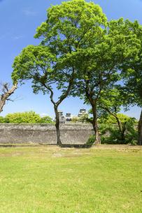 熊本城「復興再建完了の天守閣」二の丸広場より熊本城風景の写真素材 [FYI04858711]