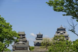 熊本城「復興再建完了の天守閣」二の丸広場より熊本城風景の写真素材 [FYI04858715]