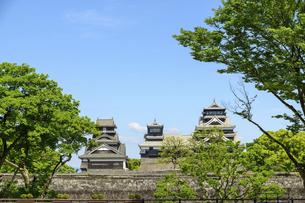 熊本城「復興再建完了の天守閣」二の丸広場より熊本城風景の写真素材 [FYI04858716]