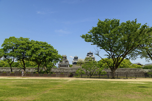 熊本城「復興再建完了の天守閣」二の丸広場より熊本城風景の写真素材 [FYI04858718]