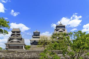 熊本城「復興再建完了の天守閣」二の丸広場より熊本城風景の写真素材 [FYI04858719]