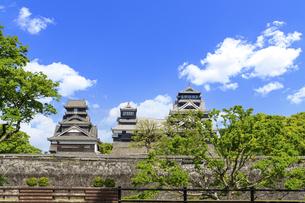 熊本城「復興再建完了の天守閣」二の丸広場より熊本城風景の写真素材 [FYI04858720]