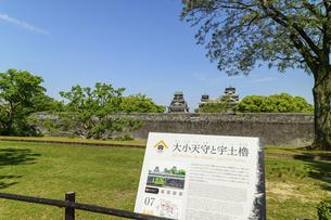 熊本城「復興再建完了の天守閣」二の丸広場より熊本城風景の写真素材 [FYI04858740]