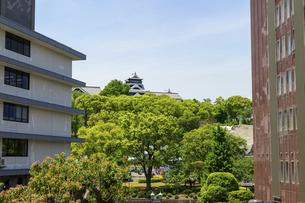 熊本城「復興再建完了の天守閣」上通・繁華街より熊本城・新緑撮影の写真素材 [FYI04858832]