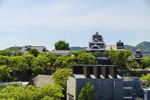 熊本城「復興再建完了の天守閣」ビル屋上より山並み背景に熊本城正面撮影の写真素材 [FYI04858848]