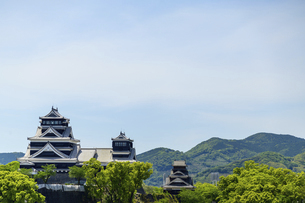 熊本城「復興再建完了の天守閣」ビル屋上より山並み背景に熊本城正面撮影の写真素材 [FYI04858852]