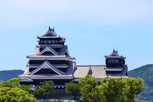 熊本城「復興再建完了の天守閣」ビル屋上より山並み背景に熊本城正面撮影の写真素材 [FYI04858854]