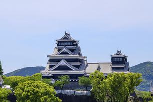 熊本城「復興再建完了の天守閣」ビル屋上より山並み背景に熊本城正面撮影の写真素材 [FYI04858857]