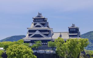 熊本城「復興再建完了の天守閣」ビル屋上より山並み背景に熊本城正面撮影の写真素材 [FYI04858858]