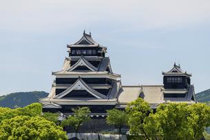 熊本城「復興再建完了の天守閣」ビル屋上より山並み背景に熊本城正面撮影の写真素材 [FYI04858863]
