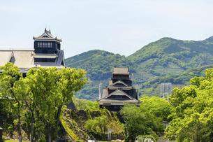 熊本城「復興再建完了の天守閣」ビル屋上より山並み背景に熊本城正面撮影の写真素材 [FYI04858866]