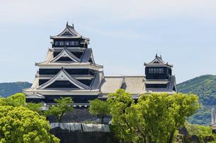 熊本城「復興再建完了の天守閣」ビル屋上より山並み背景に熊本城正面撮影の写真素材 [FYI04858870]