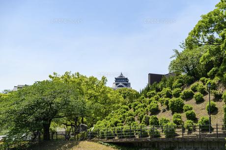熊本城「復興再建完了の天守閣」路上より撮影の写真素材 [FYI04858874]
