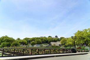 熊本城「復興再建完了の天守閣」路上より撮影の写真素材 [FYI04858878]