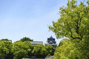 熊本城「復興再建完了の天守閣」路上より撮影の写真素材 [FYI04858879]