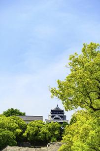 熊本城「復興再建完了の天守閣」路上より撮影の写真素材 [FYI04858880]