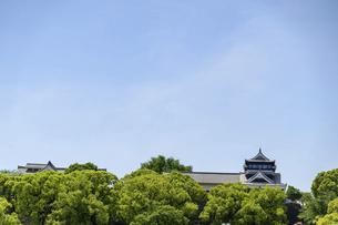 熊本城「復興再建完了の天守閣」路上より撮影の写真素材 [FYI04858881]
