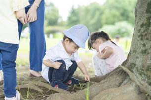 公園で遊ぶ子供たちの写真素材 [FYI04858955]