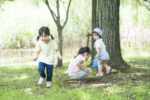 公園で遊ぶ子供たちの写真素材 [FYI04858966]