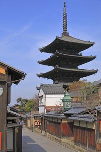 3月 枝垂桜の八坂の塔  -京都東山の春-の写真素材 [FYI04859128]