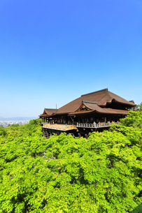 世界文化遺産 京都・清水寺の奥の院より本堂舞台の写真素材 [FYI04859366]