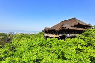 世界文化遺産 京都・清水寺の奥の院より本堂舞台の写真素材 [FYI04859367]