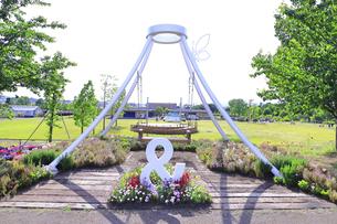 神奈川県立 花菜ガーデンの写真素材 [FYI04859409]
