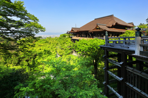 世界文化遺産 京都・清水寺の奥の院より本堂舞台の写真素材 [FYI04859445]