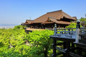 世界文化遺産 京都・清水寺の奥の院より本堂舞台の写真素材 [FYI04859446]