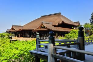 世界文化遺産 京都・清水寺の奥の院より本堂舞台の写真素材 [FYI04859447]