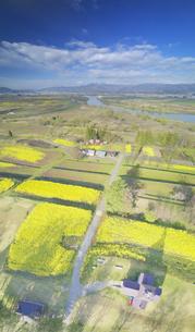 菜の花畑と寄楽舎と斑尾山と千曲川の写真素材 [FYI04859715]
