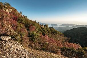 【香川県 小豆島】紅葉した秋の寒霞渓 自然風景の写真素材 [FYI04859745]