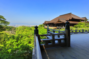 世界文化遺産 京都・清水寺の奥の院より本堂舞台の写真素材 [FYI04859752]