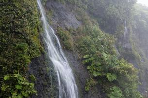 早朝の岩肌を流れる滝の写真素材 [FYI04859839]