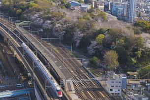 日本最初の公園 桜咲く飛鳥山公園とJR東日本E926系East-iの写真素材 [FYI04859856]