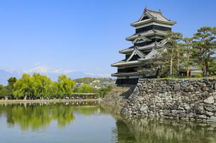 初夏の松本城 長野県の写真素材 [FYI04859868]