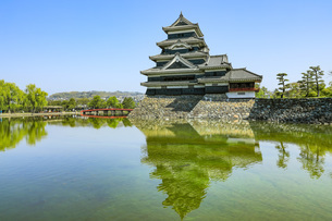 初夏の松本城 長野県の写真素材 [FYI04859870]