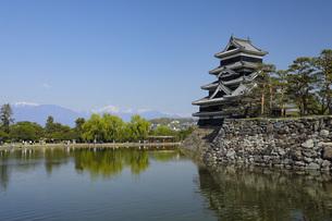 初夏の松本城 長野県の写真素材 [FYI04859872]