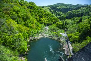 新緑の荒沢ダムの写真素材 [FYI04859946]