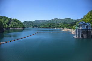 新緑の荒沢ダムの写真素材 [FYI04859947]