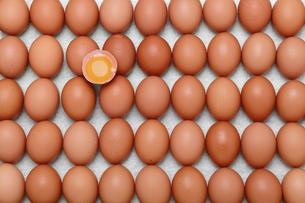 卵、背景として鶏の卵の写真素材 [FYI04859972]