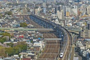 東京を走るJR東日本 E2系新幹線はやて E3系山形新幹線 E7系,かがやき北陸新幹線の写真素材 [FYI04860008]