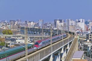 東京を走るJR東日本 E5系はやぶさ東北新幹線 E6系こまち秋田新幹線の写真素材 [FYI04860010]