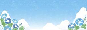夏空と朝顔の背景 ヨコ長のイラスト素材 [FYI04860042]