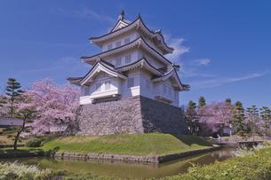 青空に桜と忍城址公園の写真素材 [FYI04860083]