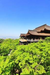 世界文化遺産 京都・清水寺の本堂舞台の写真素材 [FYI04860309]
