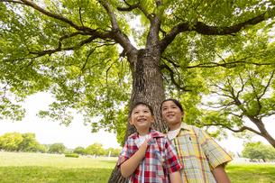 大きな木の下に並んで立つ男の子の写真素材 [FYI04860334]