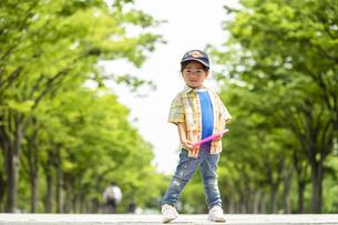 フリスビーを持って並木道に立つ男の子の写真素材 [FYI04860357]